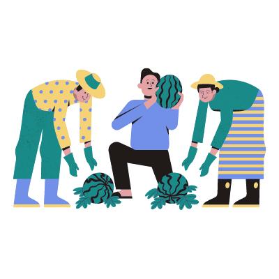 Trois jardiniers cultivent leurs récoltes