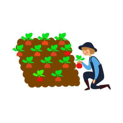 Une jardinière récolte ses fruits