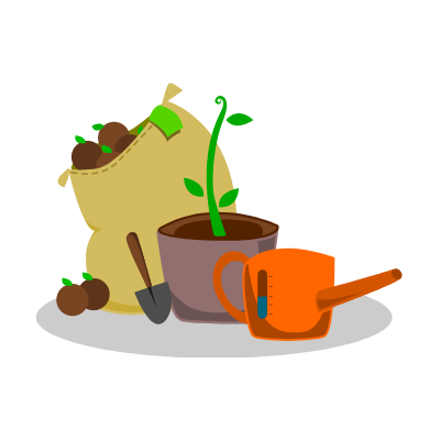 Pots de fleurs et plantes