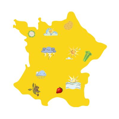 carte de la France avec des météos différentes